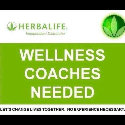 herbalife jobs