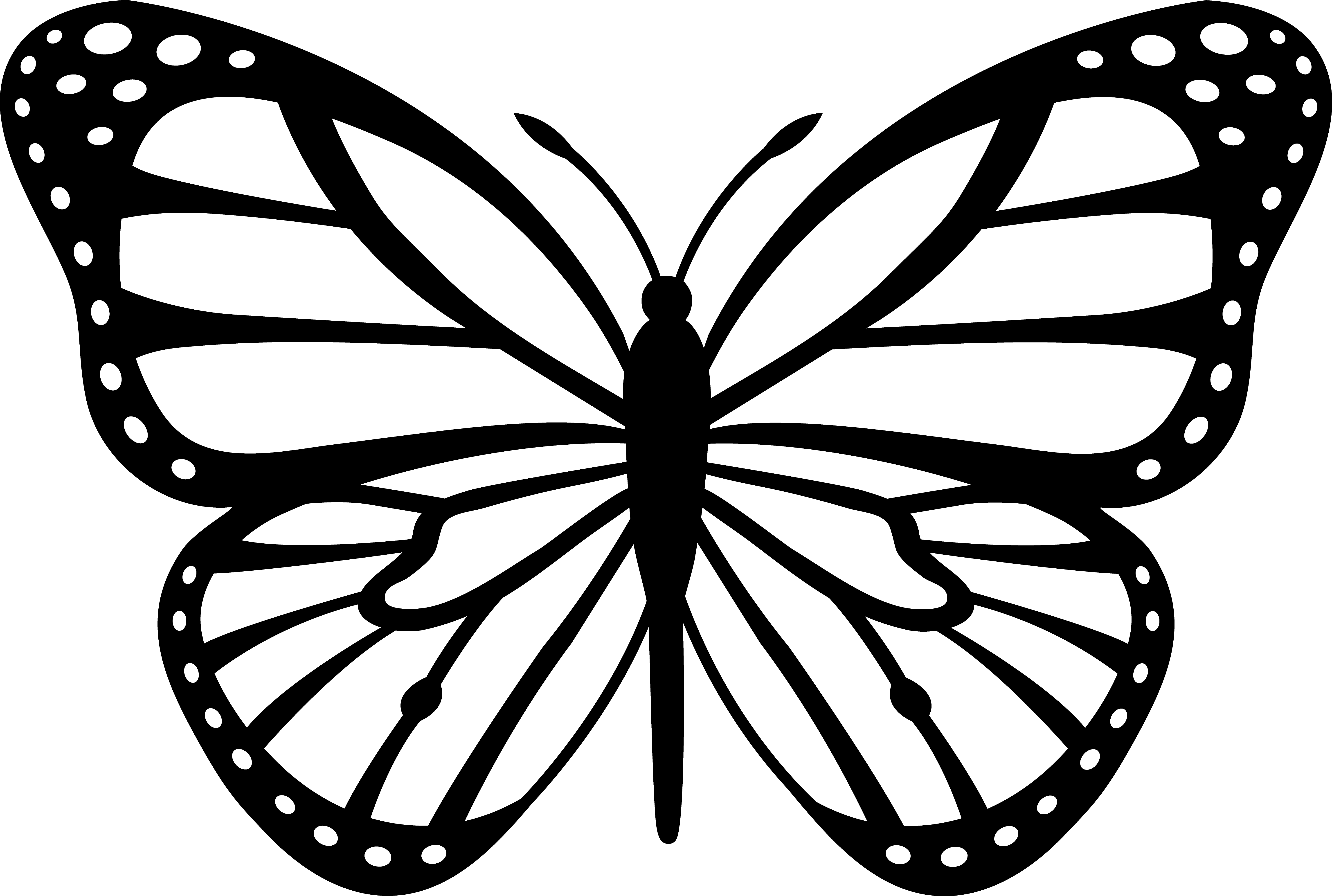 Pictures of monarch butterflies for coloring - Monarch Butterfly Coloring Pages Print Ifiatus Lestari