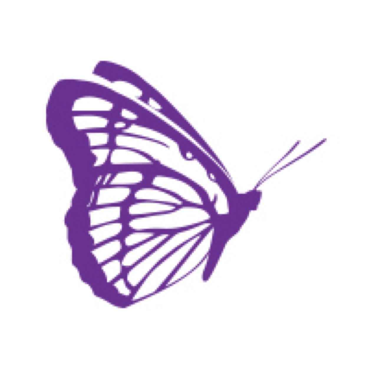 Purple Butterfly Cartoon Images