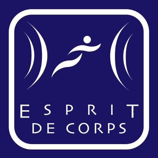 Image result for espritdecorps logo