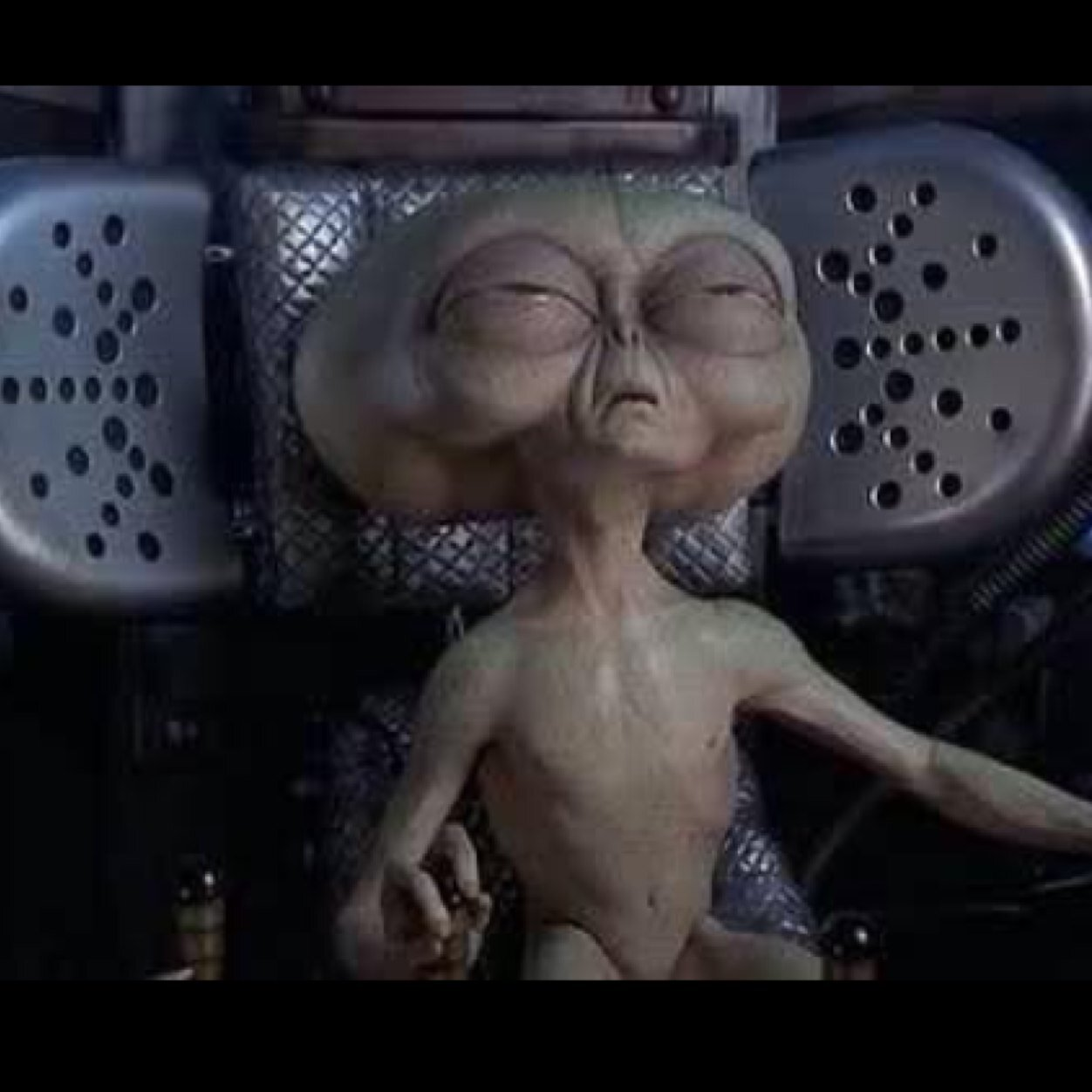 "ayy lmao alien on twitter: ""all i do is get high and fuck your bitch"""