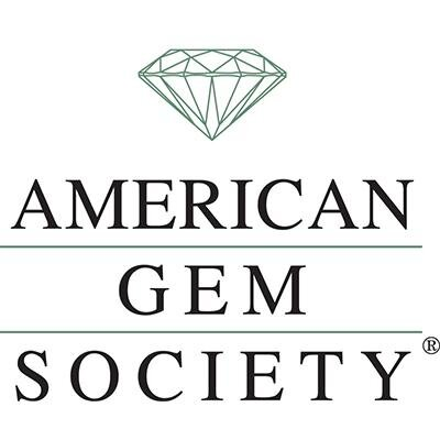 american society Welcome to the american society of breast surgeons the american society of breast surgeons is committed to continually improving the practice of breast surgery by serving as an advocate.