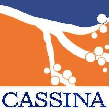 The Cassina Group