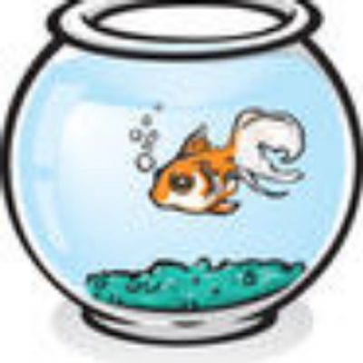 Small fish big pond learnthisgame twitter for Big fish in a small pond game