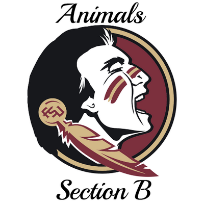 Animals of Section B | Social Profile