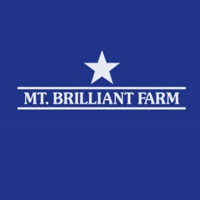 Mt Brilliant Farm Mtbrilliant Twitter