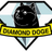 DiamondDoge