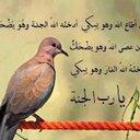محمد البرنس (@010951817) Twitter
