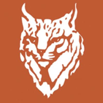 lynx bank