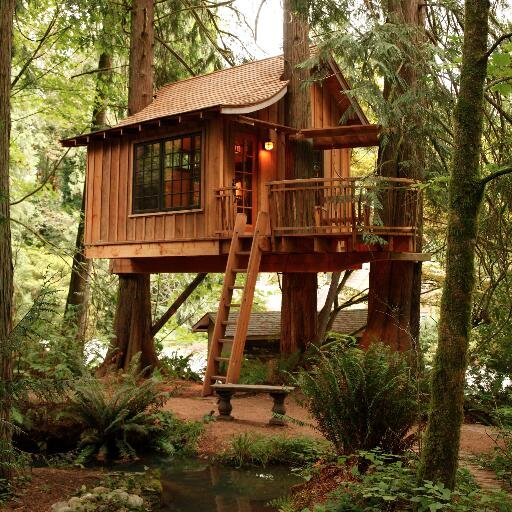 nelson treehouse - Treehouse Masters Irish Cottage