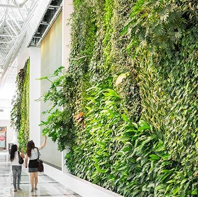 Exceptional Living Green Walls