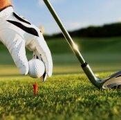 Golf agent