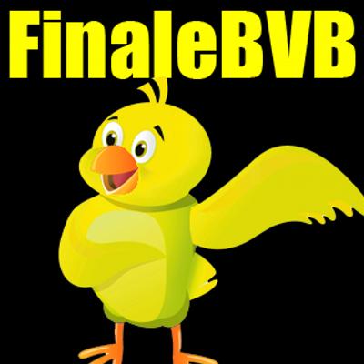 finale bvb