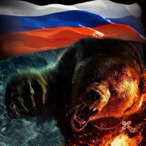 картинки русский медведь на фоне флага россии главные интересные достопримечательности