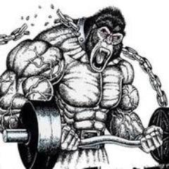 Fitness Viking