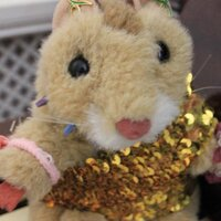 Squeak The Hamster | Social Profile