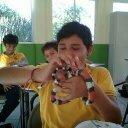 Pedro Ocampo (@031193d6be6444d) Twitter