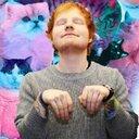 I'm Ed's cat. meow