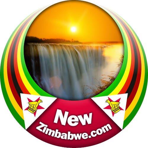 NewZimbabwe.com