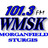 101.3 FM WMSK