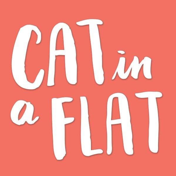 Logo de la société Cat in a Flat