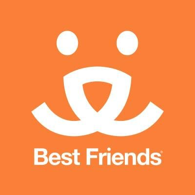 Best Friends | Social Profile