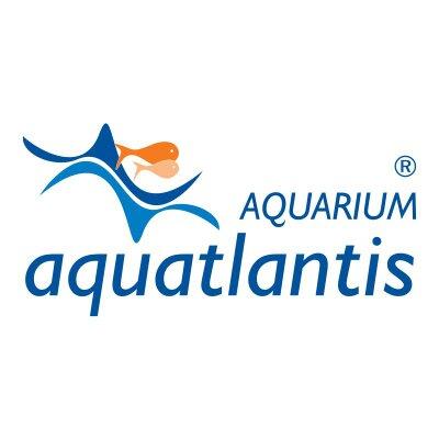 Aquatlantis On Twitter Gostei De Um Video Do Youtube Https T Co