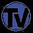 Web TV Observer
