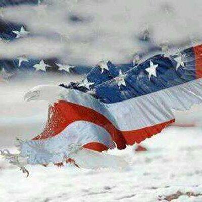 Patriotic Veteran Patriotic Veteran