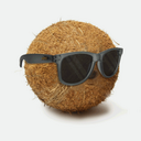 Photo of palm3sunglasses's Twitter profile avatar