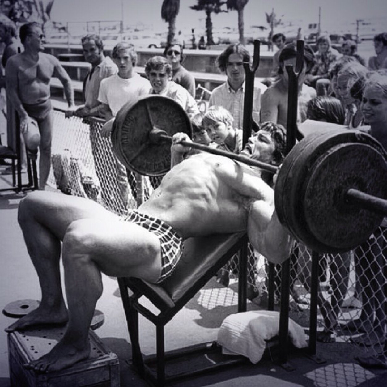 Humor About Making Muscles Bag Lifting Stock Photo 42518893 ...