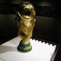 ワールドカップ TV FAN