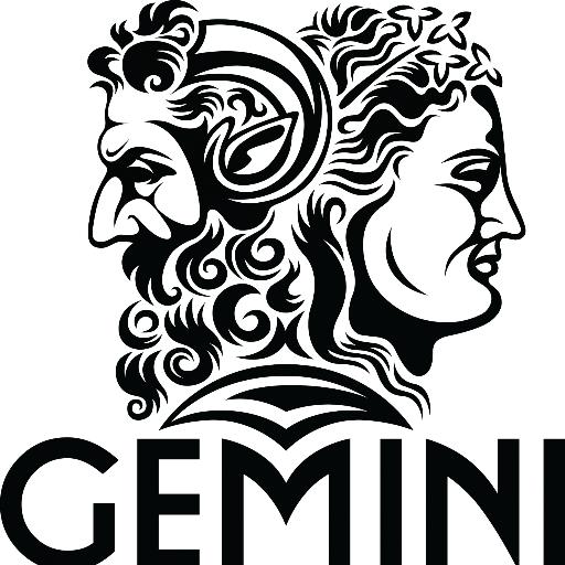 Afbeeldingsresultaat voor gemini  horoscope