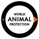ProteccionAnimal  (@WSPA_Latam) Twitter