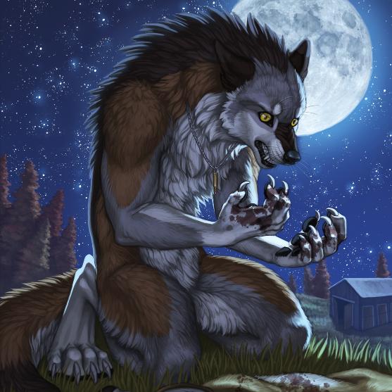 wolf hug human