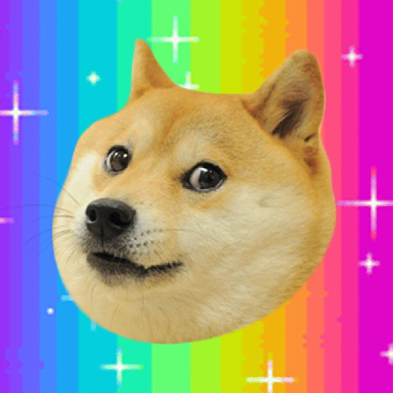 doge atnarcolepticdog twitter