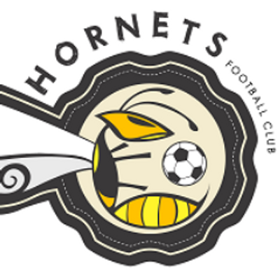 Hornets FC Logo