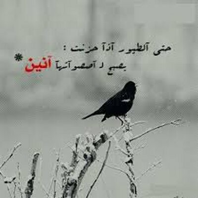 Bes 0000 On Twitter حكمه اعجبتني من يتجاهلك بحجة الظروف تجاهله أنت بحجة الزهايمر