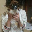 takaya (@0t8k3y2) Twitter