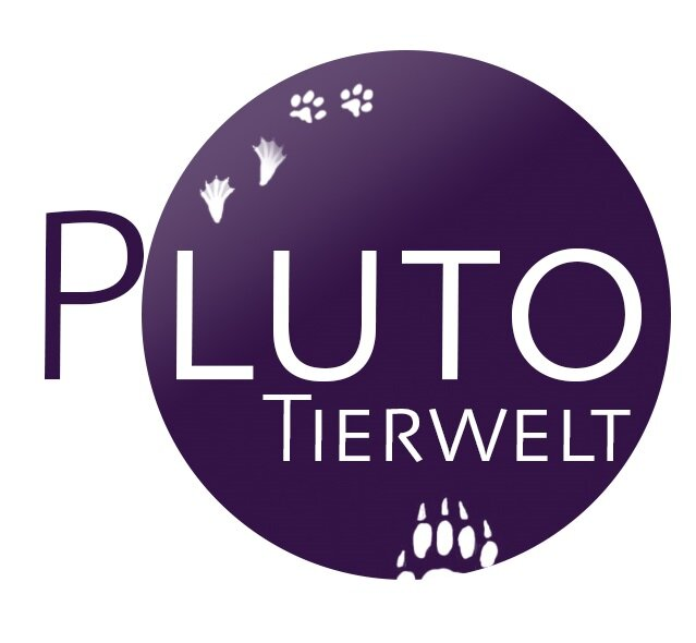 tierwelt pluto tierweltpluto twitter. Black Bedroom Furniture Sets. Home Design Ideas