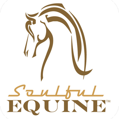 Soulful Equine | Social Profile