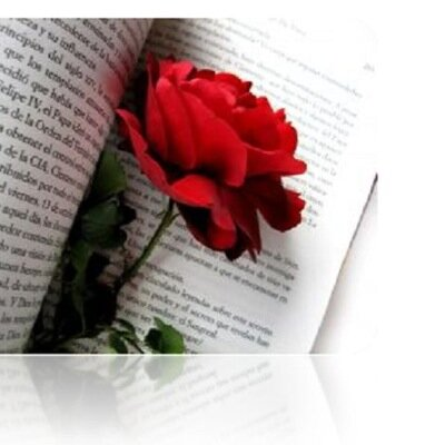 Clavel Rojo On Twitter Reality Frases Libros Libro