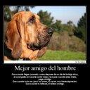 Mario Ramon Peña  (@13Marioramon) Twitter