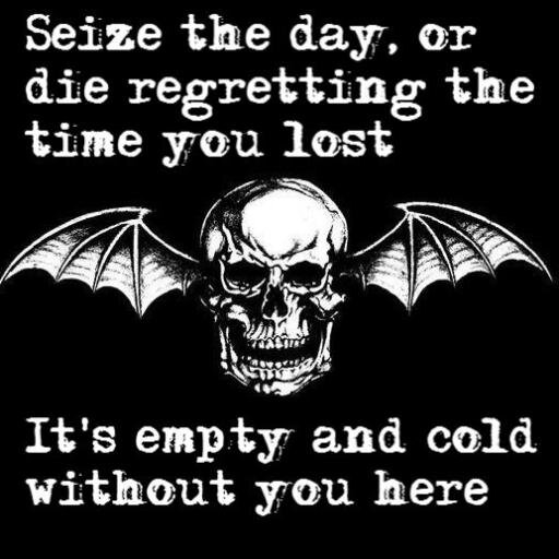 A7x Lyrics On Twitter Hail To The King Hail To The One Kneel To The Crown Stand In The Sun Hail To The King A7xlyrics Hailtotheking