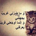 amr alnajjar (@007Alnajjar) Twitter