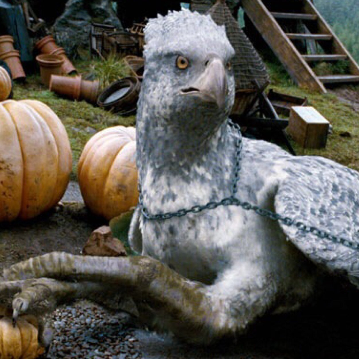 buckbeak deutsch