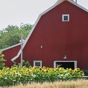 GO! Farm Videos