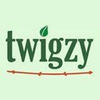 Twigzy