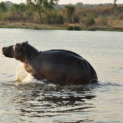 Cul Tours & Safaris