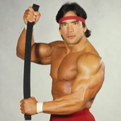 "Image result for Ricky ""The Dragon"" Steamboat"